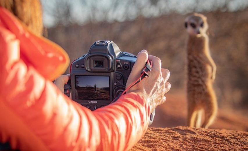 Canon 1D X Mark III ser ud til at have en række spændende features til video herunder 12bit RAW